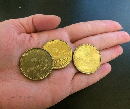CAD loonie. Renee Tsang Travel
